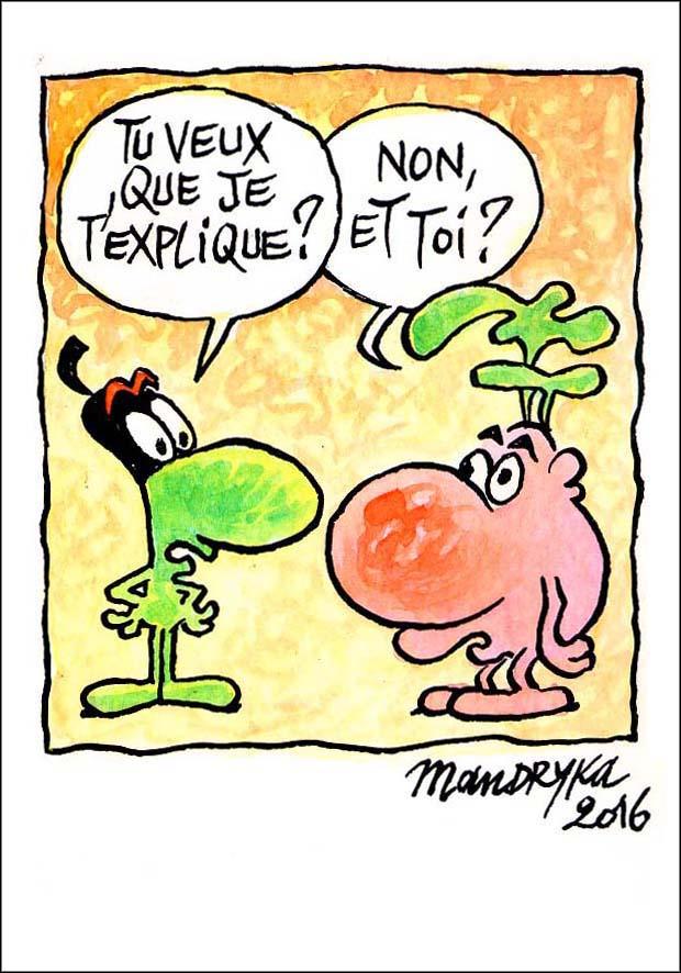 Le-concombre-explique-a-chourave-1
