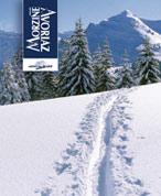 Morzine sous la neige